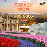 THE BEST OF TURKEY 9 DAYS 6 NIGHTS