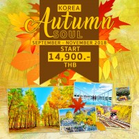 Korea Autumn's Soul